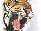 El tigre rugirá una vez más…