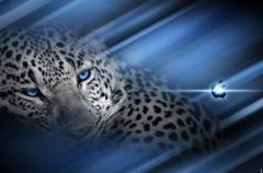 22 wallpapers estilo Leopard