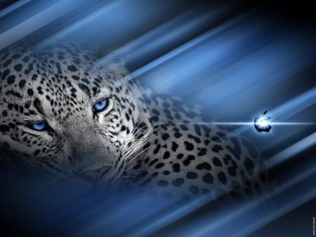 leopard-wallpa