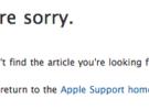 Desaparece la actualización de NVIDIA 2009