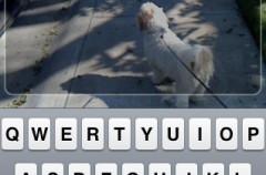 Email'n'Walk, una interesante forma de no chocar mientras escribes emails desde el iPhone