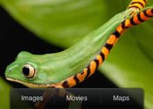 Disponible la aplicación oficial de Bing para el iPhone