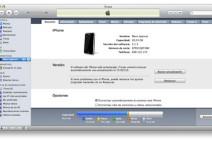 Problemas con la actualización 3.1.3 para el iPhone e iPod Touch