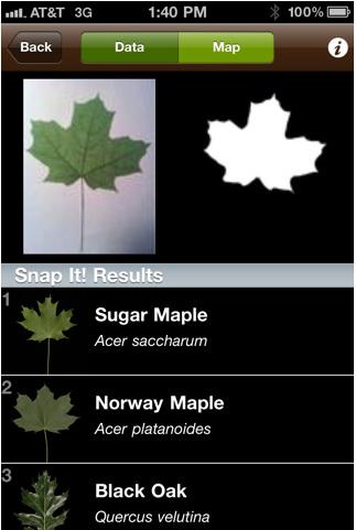 leafsnap.png