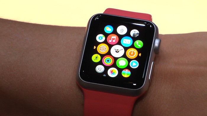 Apple Watch wrist