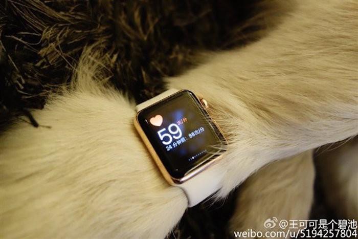 Perro Apple Watch_2