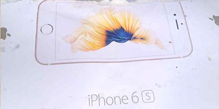 iphone6scaja2