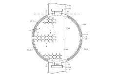 ¿Y si el próximo Apple Watch fuera circular?