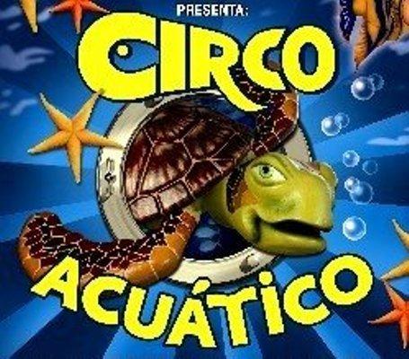 El circo acuático llega a Sevilla