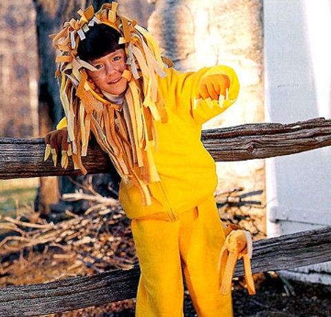 carnaval disfraz casero de leon