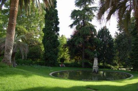 Taller familiar un paseo por el mundo de las plantas for Jardin botanico madrid conciertos