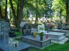 Los peques pueden visitar el cementerio