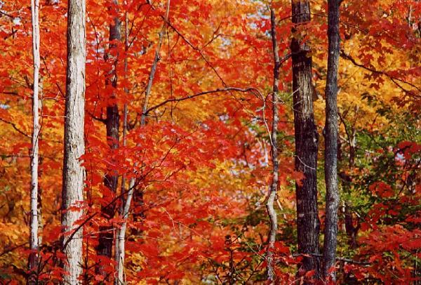 Cambio de hora del otoño