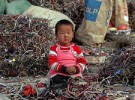 La ONU denuncia la explotación laboral infantil