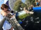 Encuentro con pingüinos en el Oceanogràfic de Valencia