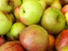 Decálogo de Carrefour a favor de una alimentación sana