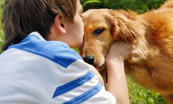 perros y niños con cancer