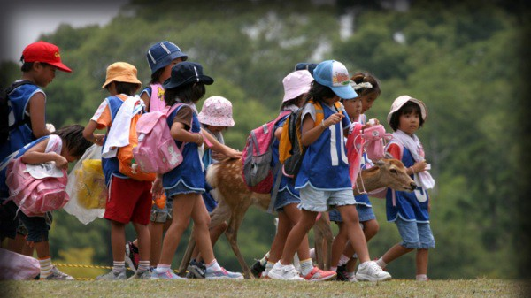 excursion escolar
