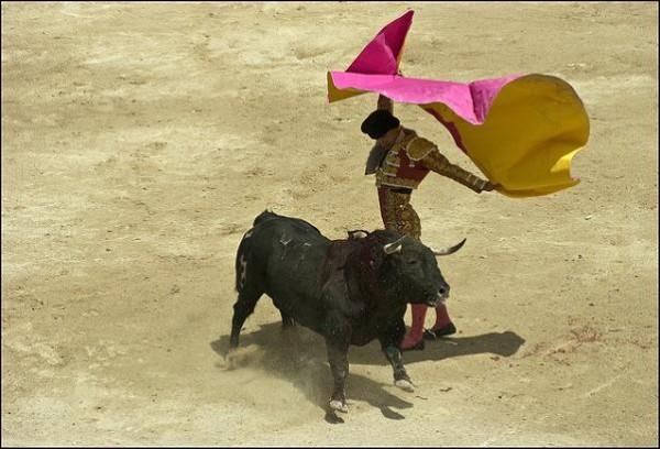 RTVE emitirá toros en horatio protegido