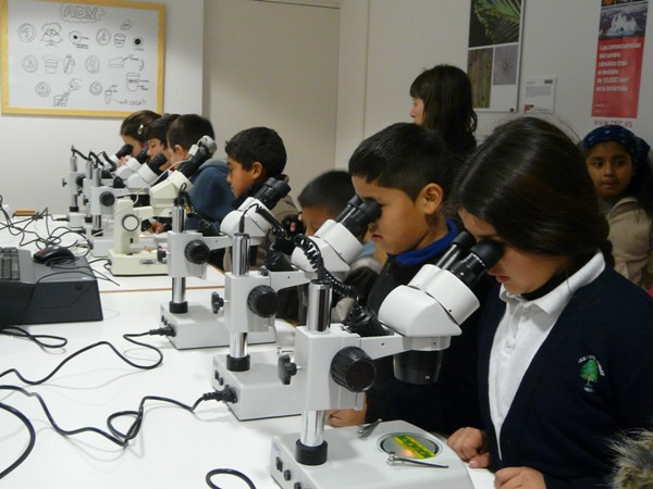 La vida al microscopio en Madrid