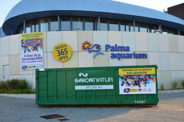 Fiesta benéfica en el Palma Aquarium