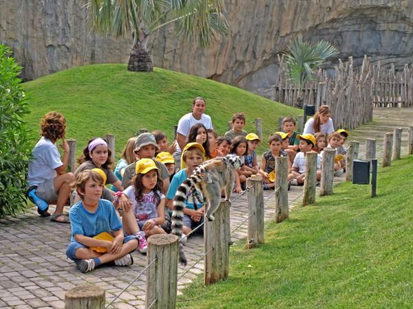 Planes para Semana Santa: Expedición África con Bioparc en Valencia