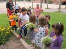La jardinería para mejorar sus habilidades intelectuales, sociales y físicas