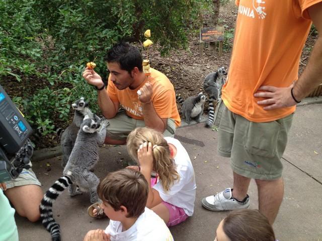 Convive con animales: campamentos y talleres en Faunia y el Zoo de Madrid