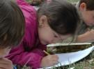Premio Mapendo de Dibujo Infantil para defender la Naturaleza
