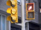Cruzar de manera adecuada evita accidentes