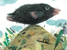 Lectura recomendada de la semana: Pequeño pájaro de tierra
