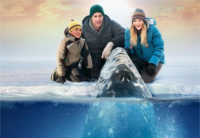 cine: una aventura extraordinaria
