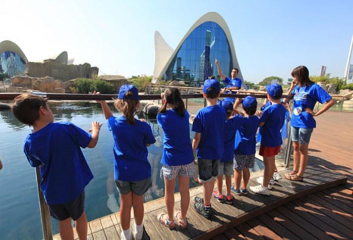 Escuela verano 2015 ciudad artes y ciencias valencia