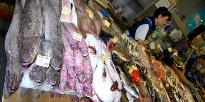 Pescados que son un peligro para nuestros hijos