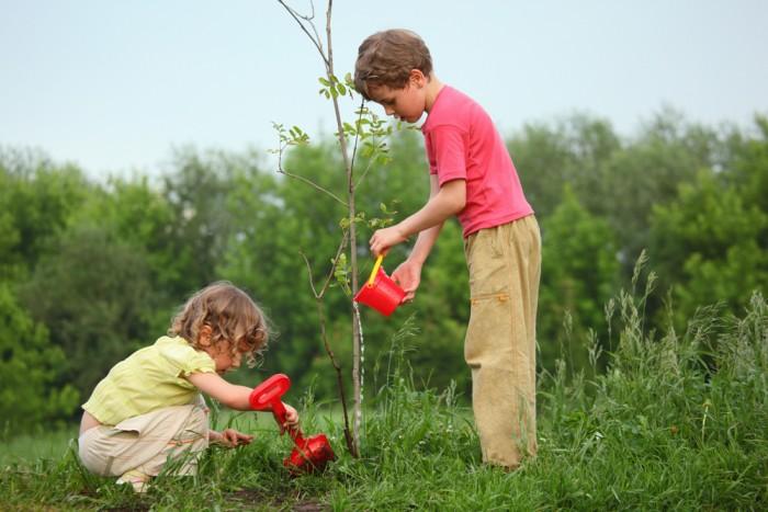 niños listos y naturaleza