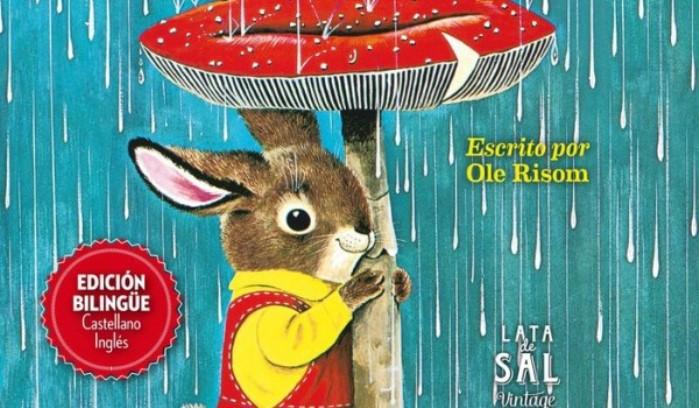 libro: soy un conejo