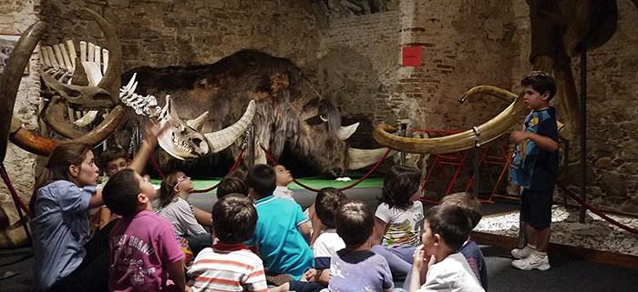 museo del mamut niños