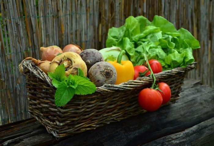 niños españoles y verdura