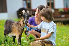 Vivir cerca de una granja previene el asma infantil