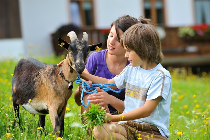animales de granja y asma infantil