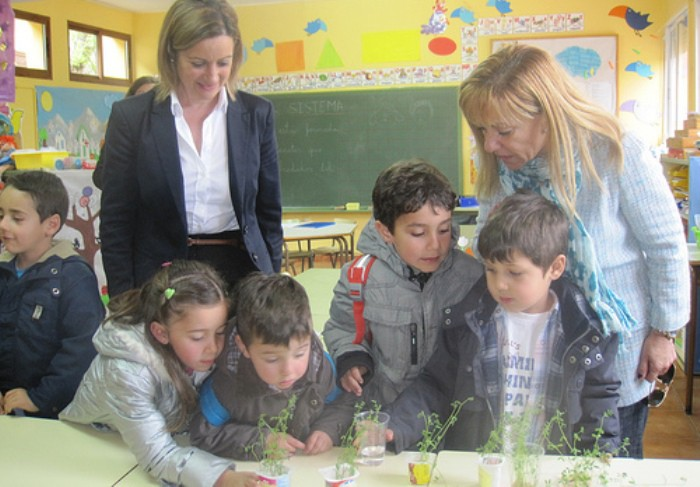 colegio de sancedo en Leon