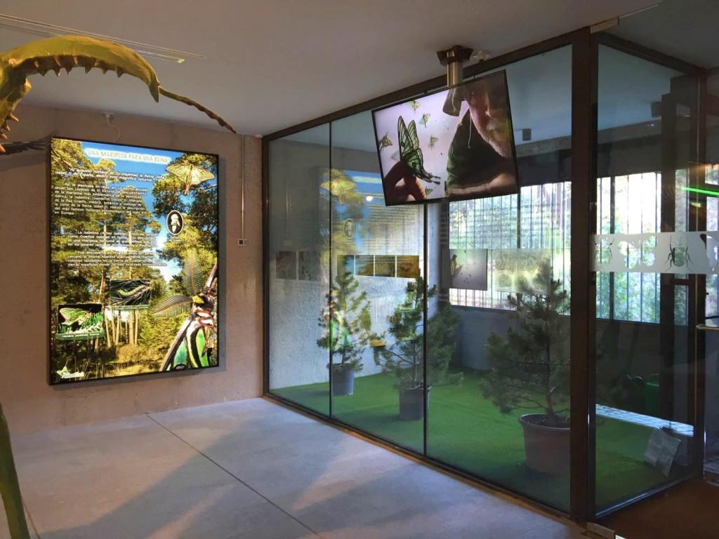 museo de naturaleza InsectPark