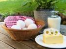 Alimentos con calcio para niños