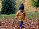 7 planes de naturaleza para hacer con niños durante el otoño