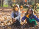 Beneficios de la educación inclusiva para los niños en el aula