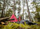 Campamentos de verano: 10 consejos para preparar la maleta