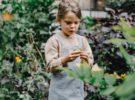10 planes con niños para descubrir la belleza de los árboles