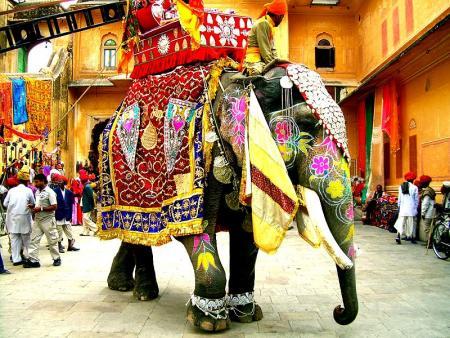 elefanteindio.jpg