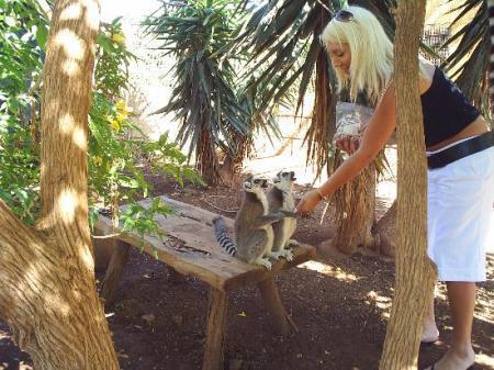 Zoo de las Islas Canarias