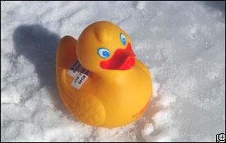 Rubber ducks nasa